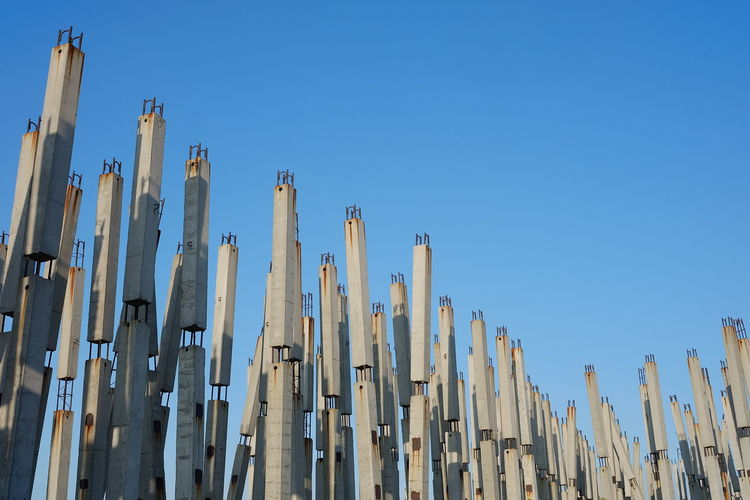 Low angle view of bamboo against clear blue sky