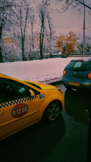 Car Transportation Street Road Day Outdoors City Snow ❄ View Winter Winter 2017 Snow Winter Snow ❄ Snowing Cold Temperature Snow Day Freshness Snowing Snowflakes ❄ Snowy Days... Built Structure Winter Time Taxi TAXİ🚕 Taxi Car Taxi Adventures