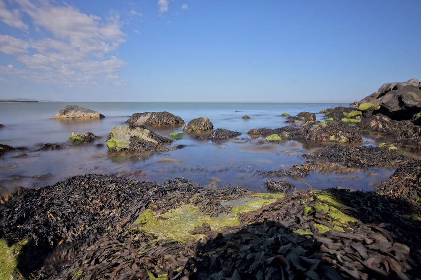 Down at the Seaside. Arklow Co. Wicklow. Arklow Beach Beauty In Nature Co Wicklow Day Horizon Over Water Irelandinspires Ireland🍀 Irish Seascape Nature No People Outdoors Rock - Object Scenics Sea Seascape Seaweed Sky Tranquil Scene Tranquility Visit Ireland Water