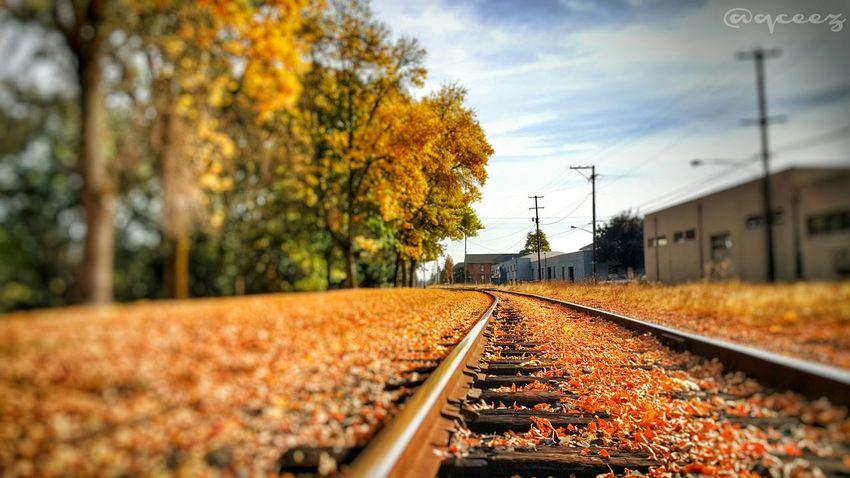 """""""Keep in mind that even if you're on the right track, you can still be left behind if you just sit there."""" Stay Focused Keep Pushing PushYourself Motivation Inspiration Fall Leaves Fallcolors Fall2015 Oregon Oregonexplored PNW Mobileediting"""