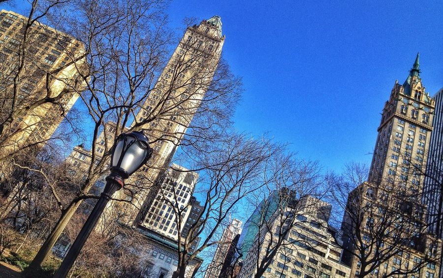 Central Park NYC HDR Collection MyHdrWorld EyeEm
