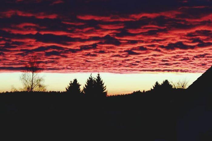 'Wir bleiben wach bis die Wolken wieder lila sind.' Taking Photos Skyporn Lilawolken Marteria