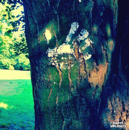 Enjoying The Sun Tree Hand Park First Eyeem Photo