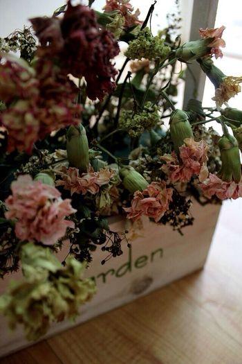 꽃/시들어도/꽃