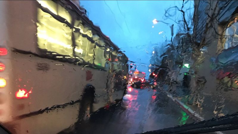 Adapted To The City Outdoors Road Building Exterior Sky Illuminated Tree City Night Rain EyeEmNewHere The City Light City Bus San Francisco Shotoniphone7 The Street Photographer - 2017 EyeEm Awards
