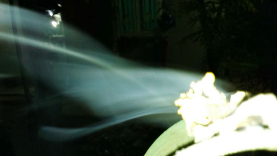 Close-up of illuminated leaf at night