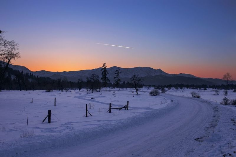 Cold Temperature Winter Snow Beauty In Nature Nature Sky Idyllic Scenics Tree Outdoors Landscape No People Day