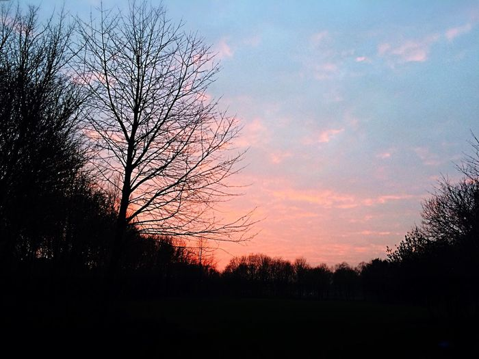 Nature Sunset Sky Beauty In Nature Silhouette Scenics Tranquility Tadaa Community Theholysin