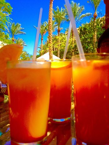 Cold Coctail Orange Drinks Outdoor Photography Garden Photography Enjoying The View Enjoying The Sun On Vacation!  Summer Drinks Foodphotography Outdoors Palmtrees Refreshment Beverage Beveragephotography Cold Beverages Orangejuice Coctail Palm Trees Blueskies