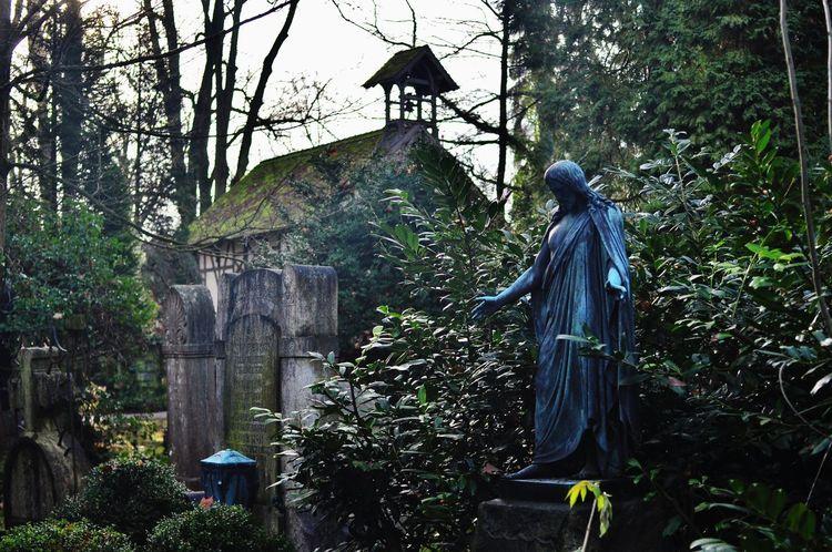 friedhof schorndorf Graveyard Graveyard Beauty Graveyard Collection Growth Jesus Jesus Christ Outdoors Statue Tombstone