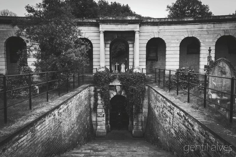 Landscape EyeEm Gallery Trees Monochrome Blackandwhite Black And White Black & White Stone Eyeem Monochrome Cemitery