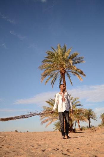 Algeria Barefeet Colours Landscape Palm Trees Sahara Sand Sky Sun