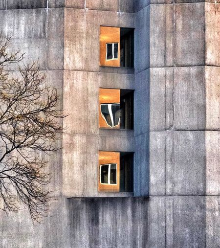 Architecture Building Exterior Window Built Structure No People Day Outdoors The Architect - 2017 EyeEm Awards