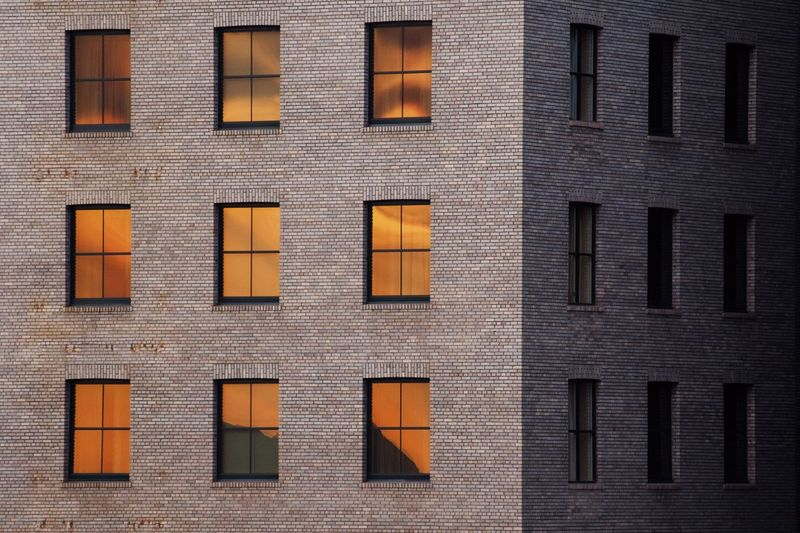 Creeping at 200mm Building Exterior Window Architecture Built Structure Full Frame Brick Wall Outdoors No People Close-up Day Colour Your Horizn