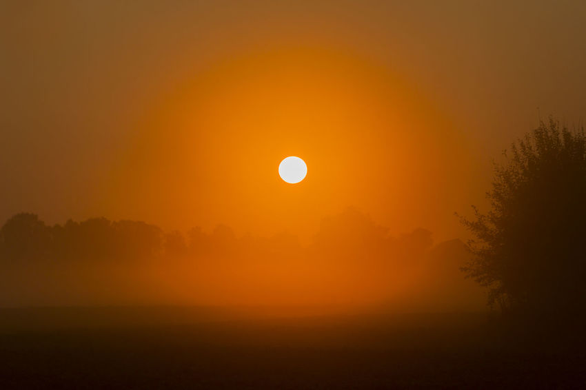 The sunrise - Atmosphere Atmospheric Mood Calm Circle Exceptional Photographs Glowing Hello World Idyllic Landscape Majestic Orange Color Remote Scenics Silhouette Sky Solitude Sun Sunrise Sunrise_sunsets_aroundworld Sunset The Week Of Eyeem Tranquil Scene Tranquility Tree My Year My View