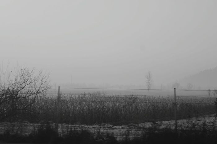 Black And White Empty Field Fromthecar Landscape Flat