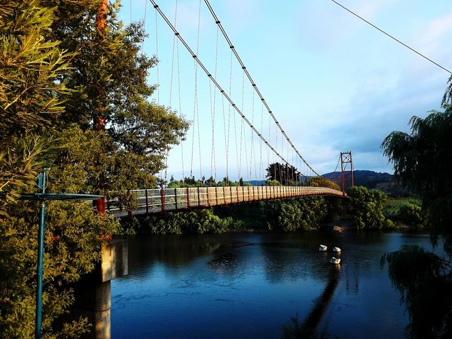 Chile Chile♥ River Bridge Clouds & Sky Summer Clouds And Sky Clouds Landscape Sky Austral South South America Water Reflections Nature Bridge Over Water Green Nature Trees Trees And Sky