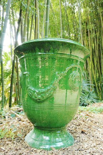 Un beau vase asiatique à la Bambouseraie d'Anduze La Bambouseraie Anduze Asiatic Vase Holiday Memories South France