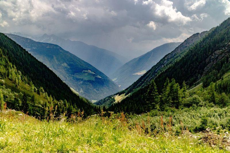 auf Sonne folgt Regen Regen Sonnenschein  Daimerhütte Südtirol Wandern Panorama Sommer Alpen Berge Tree Mountain Forest Summer Sky Grass Landscape Mountain Range Cloud - Sky