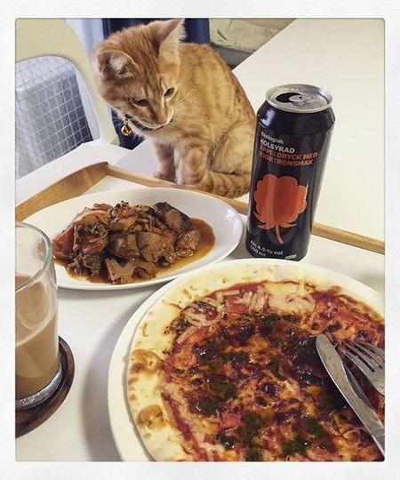 遅ごはん Cat Neko ねこ 猫 ねこ 茶トラ Piopio Pio ピオ IKEA 結局IKEAのフードコーナーは激混みだったから…スーパーのチルド的なピザ🍕&昨日の残りの根菜と豚肉のトマト煮でお家で済ますわけだ…😆😸🍴せっかくだから…IKEAの謎のお酒もね🍷