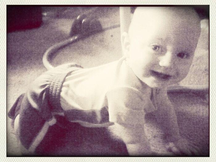 Tyssen taking his very first crawl! Hello World First Eyeem Photo