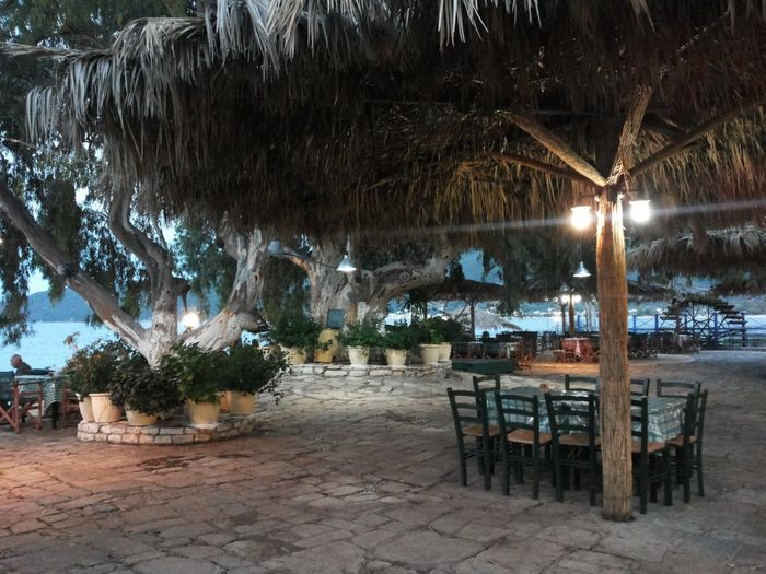 Chairs and table against illuminated trees at night