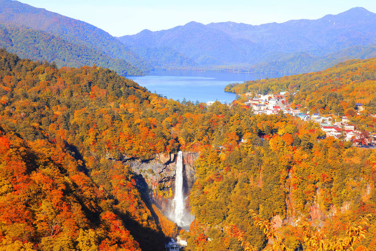 Japan Kegon Falls Nikko Autumn Beauty In Nature Change Chuzenji Day Forest Leaf Mountain Mountain Range Nature No People Outdoors River Scenics Sky Tranquil Scene Tranquility Tree Water Waterfall