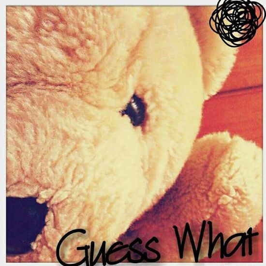 feel annoying on usual tuesday. A_Ruang Bear Cute Doll Blue Day Tuesday Annoying Guesswhat