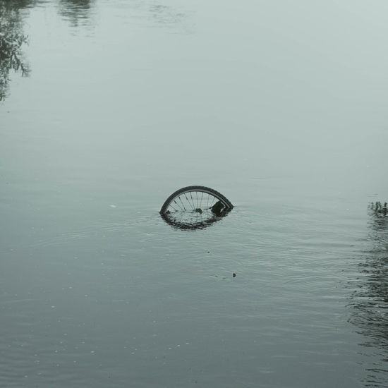 Abandoned Adapted To The City Beauty In Nature Bicycle Bike Calm City View  Cycle Drowned Lake Minimal Minimalism Minimalistic Minimalobsession Nature Reflection River Riverscape Under The Bridge Underwater Urban Landscape Urban Lifestyle Water The Photojournalist - 2017 EyeEm Awards Wheel