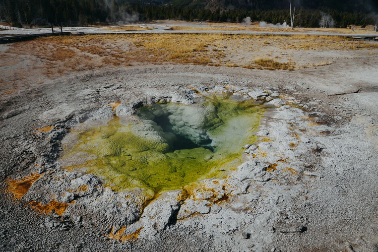 Geyser Hot Spring Yellowstone National Park Yellowstone Wyoming Wyoming Landscape Nature No People Heat - Temperature Land Plant Day Smoke - Physical Structure Tree Beauty In Nature Landscape Outdoors Water Environment Non-urban Scene Tranquility Forest Motion Scenics - Nature Power In Nature