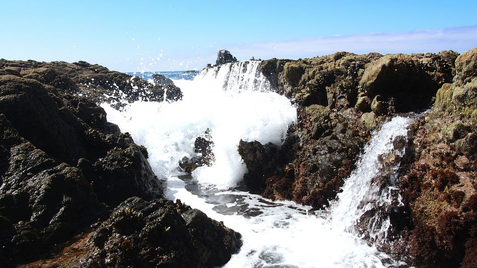 The neverending waves of the California Coast California California Coast Waves Crashing July 2016 July Showcase Summer16 Beautiful Laguna Beach Southern California Coastal Life Miles Away Perspectives On Nature