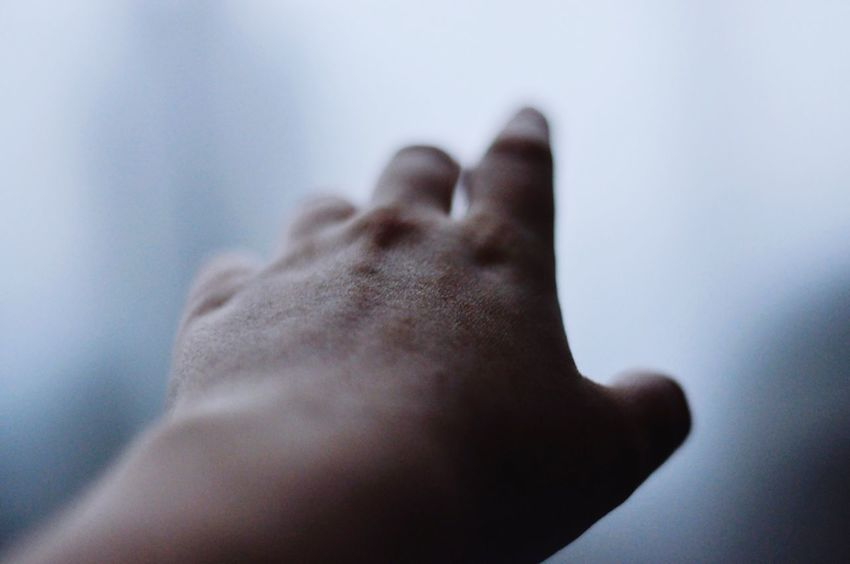 Human Body Part Body Part Human Hand One Person Hand Indoors  Close-up