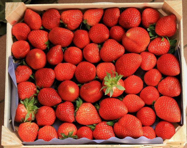 Fragola🍓🍓🍓🍓 Abundance Berry Fruit Box Close-up Food Food And Drink Fragole Freshness Fruit Healthy Eating Healthy Lifestyle Large Group Of Objects Market Red Strawberry