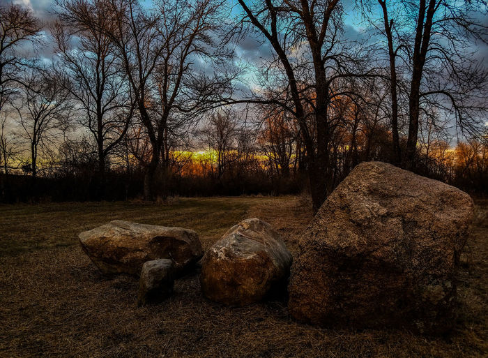 Outdoors Sky Trees Day Nature Scenics Beauty In Nature Rock Patten Rock Formation Rock Rock - Object Cloudy Sky Clouds Sunset Forest Yard Cut Grass Colorful Sky Rocks Landscape Explore Winter Minnesota Paynesville No People