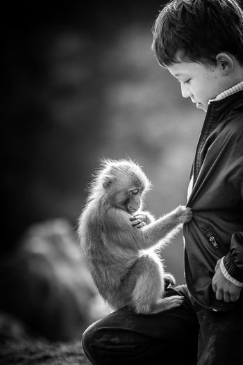 New friend Friends Animals Baby Eyeem Monkeys Monkey EyeEm Best Shots Animal Photography EyeEm Animal Lover EyeEm Best Shots - Black + White Monochrome Black And White Cute Kids Blackandwhite