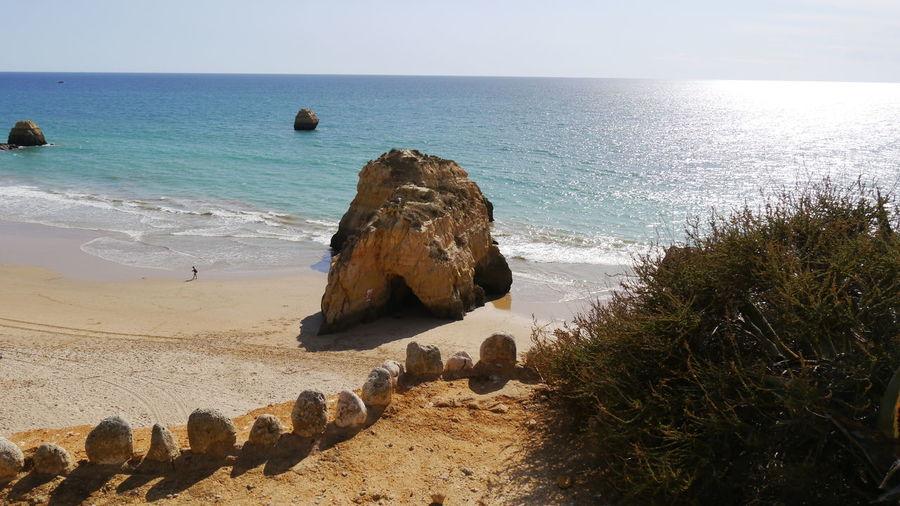 coastline with