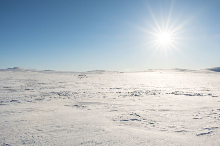 Picture taken at the flat mountain plateau in the arctic part of Northern Norway, Finnmark. Finnmark Finnmarksvidda Nature Northern Norway Winter Arctic Background Cold Daylight Europe No People Plateau Snow Sun Sunshine Vidde Wild Wilderness
