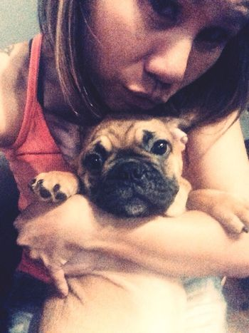 Me with Thunder when he was about 3 months old French Bulldog My French Bulldog <3 Frenchie I Love My Dog Cute Pets