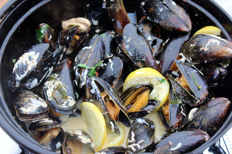 High angle view of mussels
