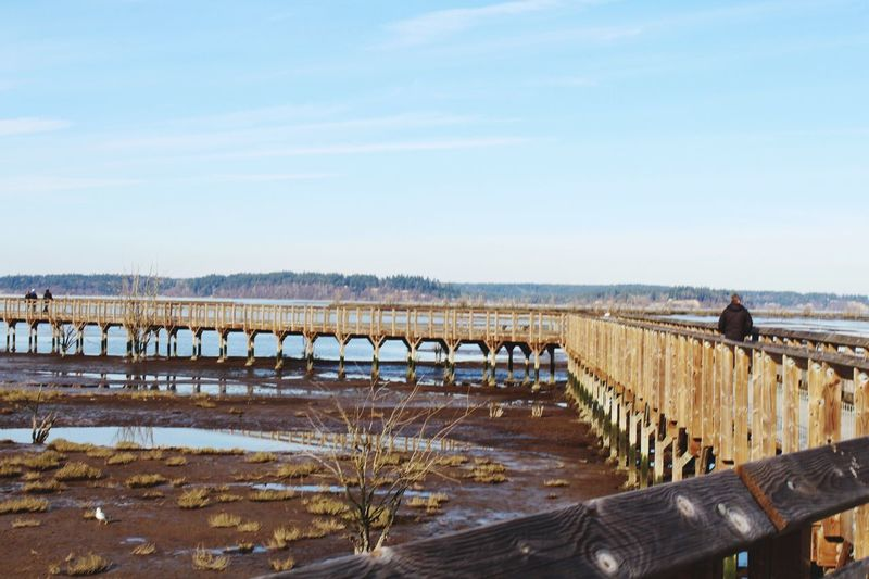 Nisqually Delta winter walk HIKES OUTDOOR Hikaricreative Long Walks EyeEm Selects Day Sky Outdoors Nature Water Bridge - Man Made Structure Wood - Material Salt Basin Landscape Scenics Architecture Clear Sky Beauty In Nature Real People Animal Themes Salt - Mineral