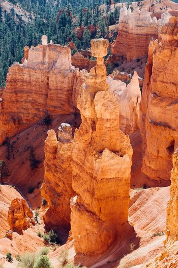 Brice Canyon MidWest National Park Utah Arid Climate Canyon Eroded Geology Physical Geography Rock Rock - Object Rock Formation Sandstone Scenics - Nature Travel Travel Destinations