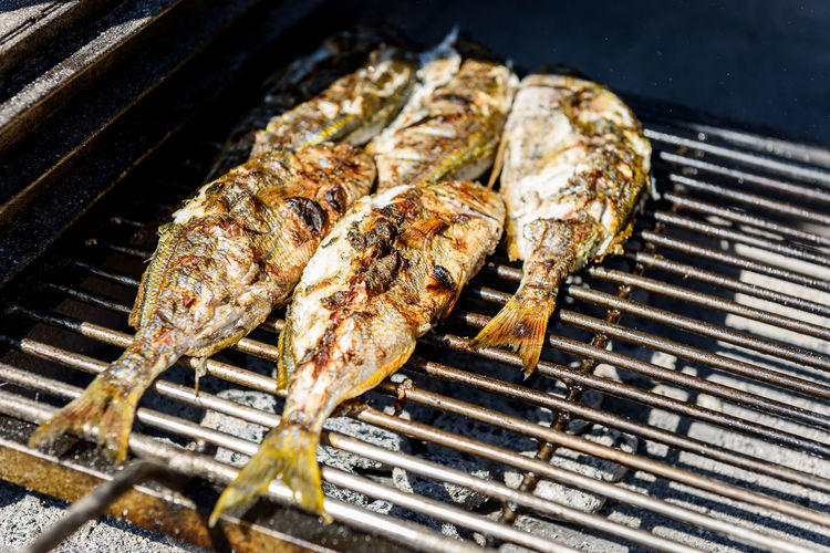 Grilling fish on a bbq barbecue grill over hot coal. Preparing and roasting Salema porgy, Sarpa salpa or sea bream fish on a barbecue in a bbq fireplace in Croatia. No People Food Food And Drink Barbecue BBQ Grill Grilled Grilling Charcoal Coals Fire Close-up Healthy Food Croatia Sea Sea Food Restaurant Barbecue Grill Preparing Food Salema Porgy Sarpa Salpa Fish Adriatic Sea