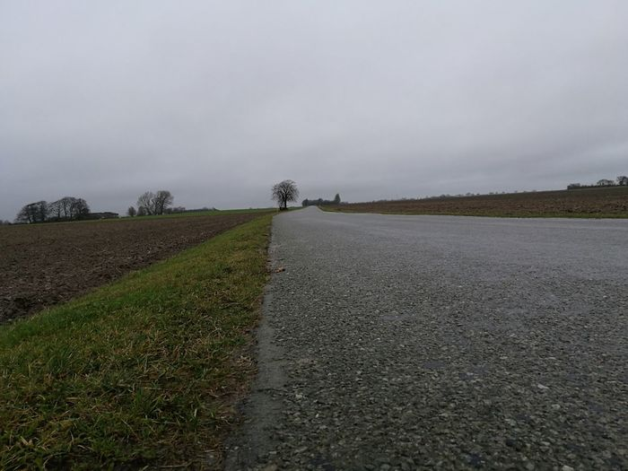 Cold and wet walk. Agriculture Landscape Cloud - Sky Nature No People Sky Field Grass Road Paved Road