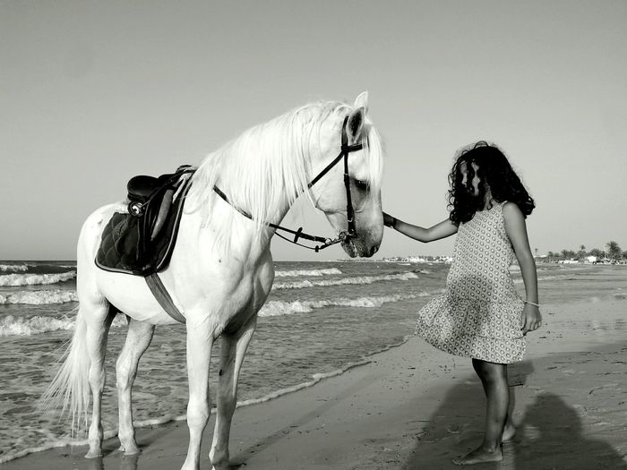 Sand Domestic Animals Horse Mammal Transportation Outdoors Beauty In Nature Blackandwhite Beach Day Girl Petting Petting Horses Petting Animals Pet Portraits Done That. Black And White Friday An Eye For Travel