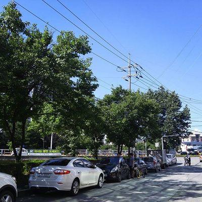 일상 주말 Street Koreastreet TheDay Dayoff