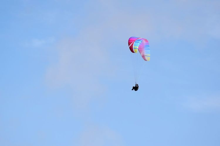 Cornwall's paragliders Copy Space Paraglider In Cornwall Paragliding Parachute Extreme Sports Aerobatics Flying Stunt Person Airshow Adventure Piloting Mid-air Parasailing Sports Activity Safety Harness