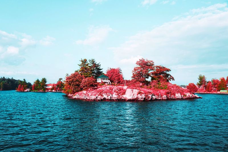 Trees EyeEm Nature Lover Pink Water Island Water Sky Cloud - Sky Tree Waterfront Nature Day Beauty In Nature Scenics - Nature River Rippled Tranquil Scene Tranquility Red Plant
