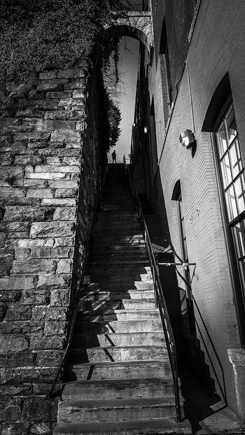 "Once again, the stairs from ""The Exorcist"", but with a difference. Monochrome Blackandwhite Black And White Black & White Washington, D. C. Arched Stairs Stair Staircase Low Angle View Indoors  People Architecture Day Adult Adults Only Only Men Built Structure Steps Building Exterior Outdoors Sky Nature"