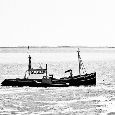 Fischers Fritze fischt frische Fische. #boat #ship #sea #ocean #bw #water Sea Water Ship Boat Ocean Bw SLR Hot_shotz Amazigram Instagood_germany Canonae1program Canonae1