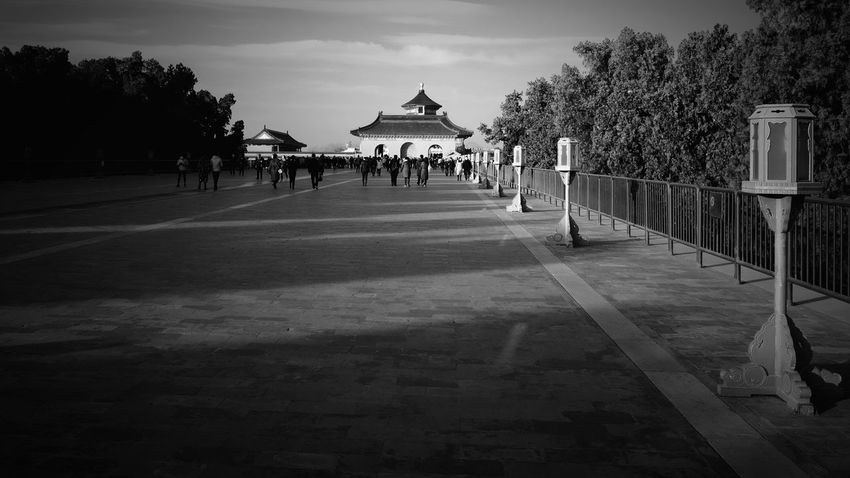 Tree Large Group Of People Sky Old Building  Old Building  Travel Palace History Old Buildings Black And White King - Royal Person Temple Of Heaven Park Beijing, China FUJIFILM X-T10 Light And Shadow City Ancient